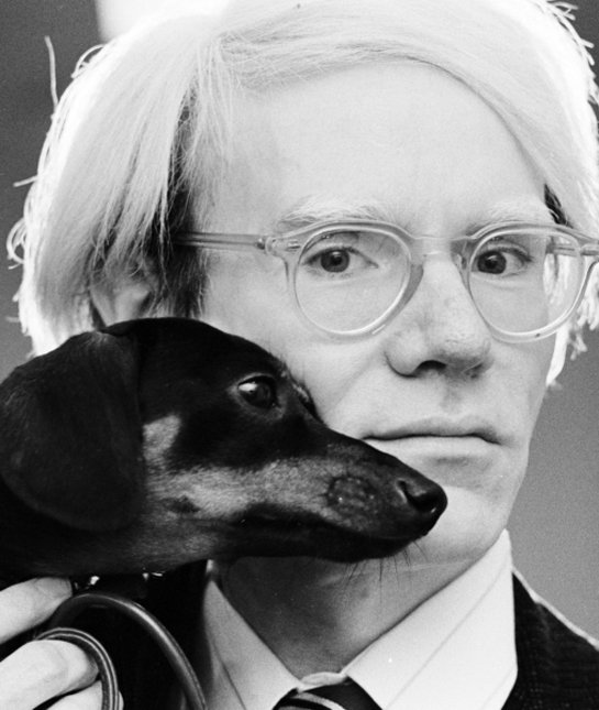 7 cool facts about dachshunds for Andy warhol famous works