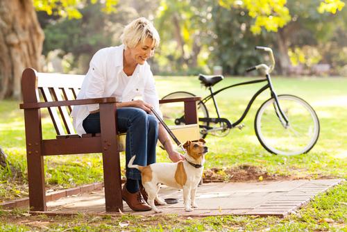 7 Easy Ways to Improve Your Dog's Health 18