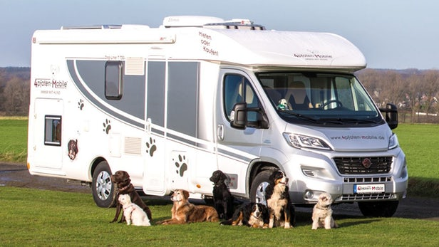 Tips For RVing With Your Dog