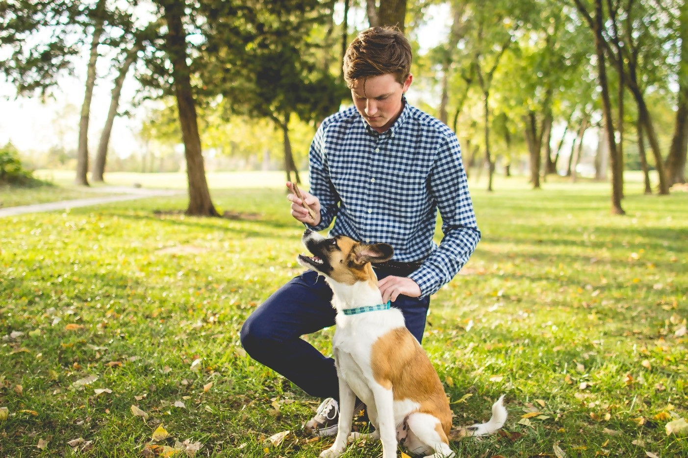 4 Reasons to Own a Dog in College 12