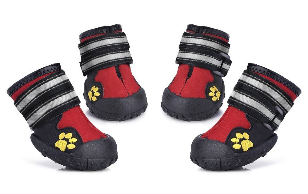 How To Choose The Best Dog Boots For Winter?