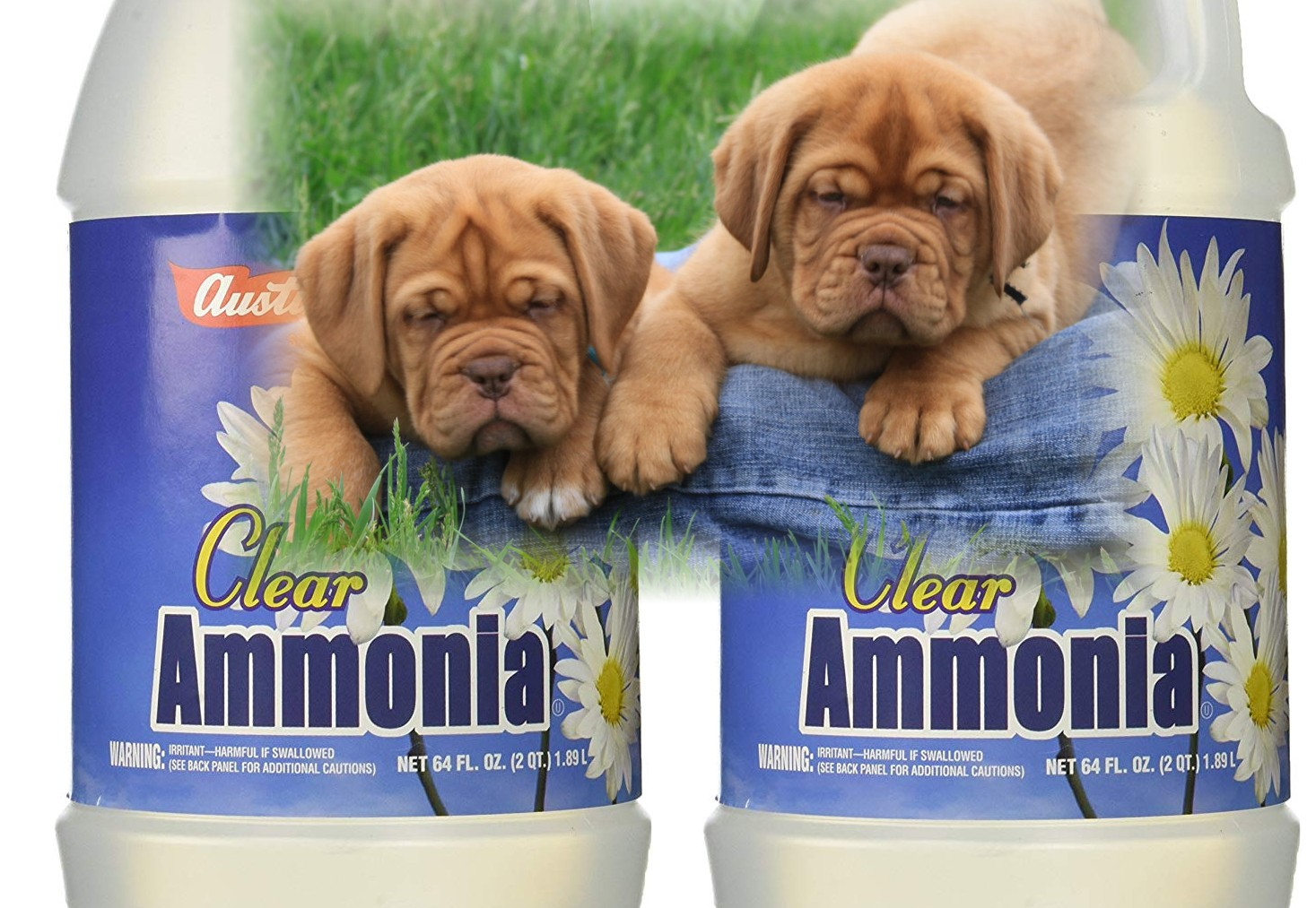 Cleaning Products You Didn't Know Were Dangerous For Your Dog