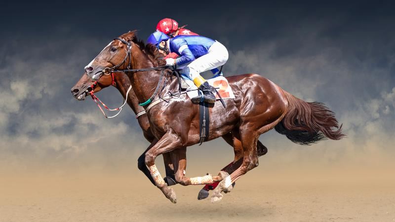 horse name Racehorse Names