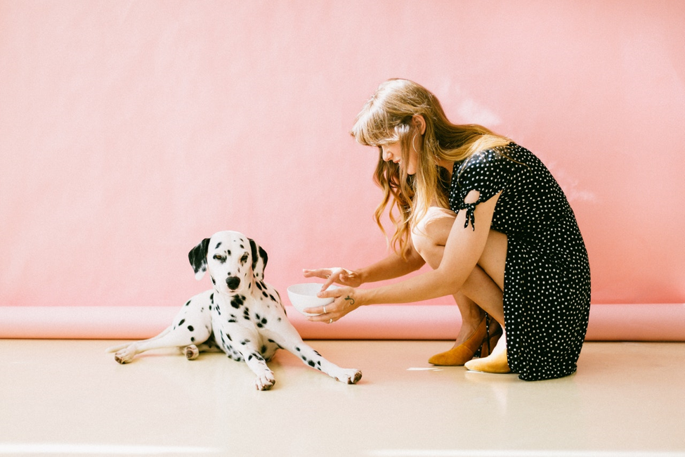 How to Get a Service Dog for Anxiety: A Helpful Guide 3