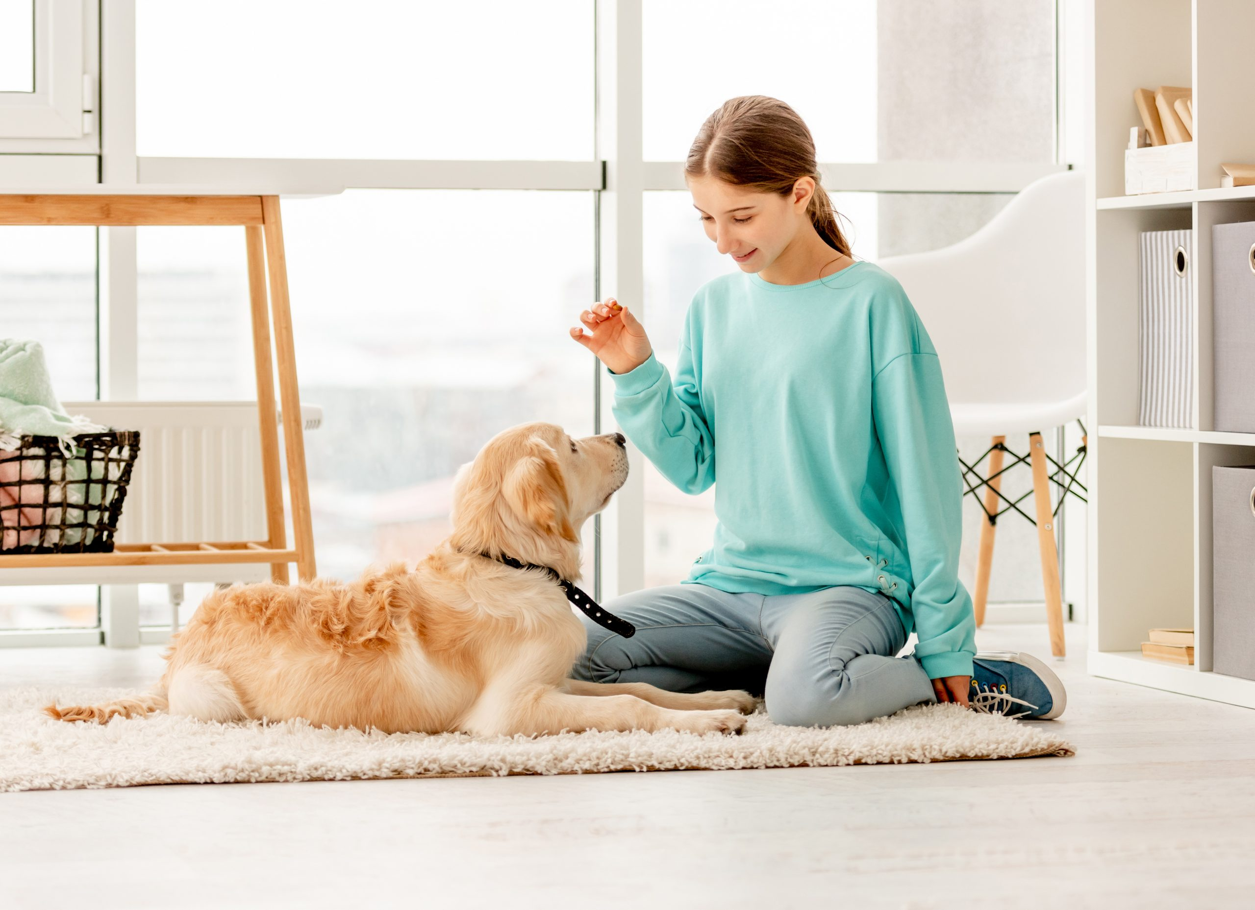 Pet Care: 10 Signs You Need To See The Vet ASAP 1