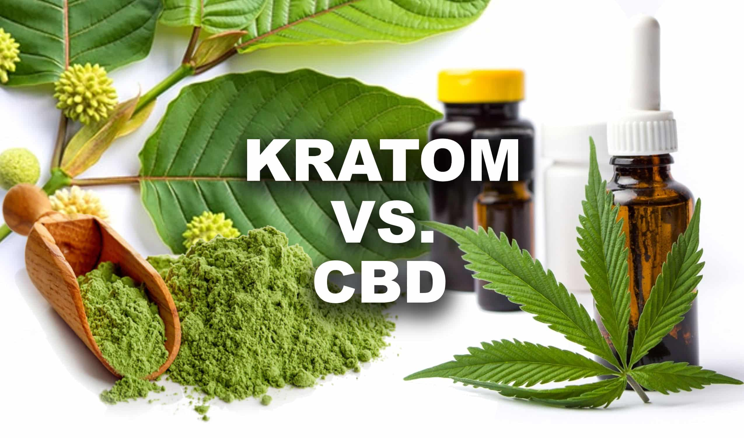 Kratom as a pain Manager and complement to CBD 2