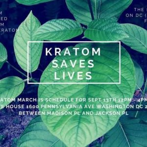 Kratom on Energy Boost and Chronic Pain Treatment – What You Should Know
