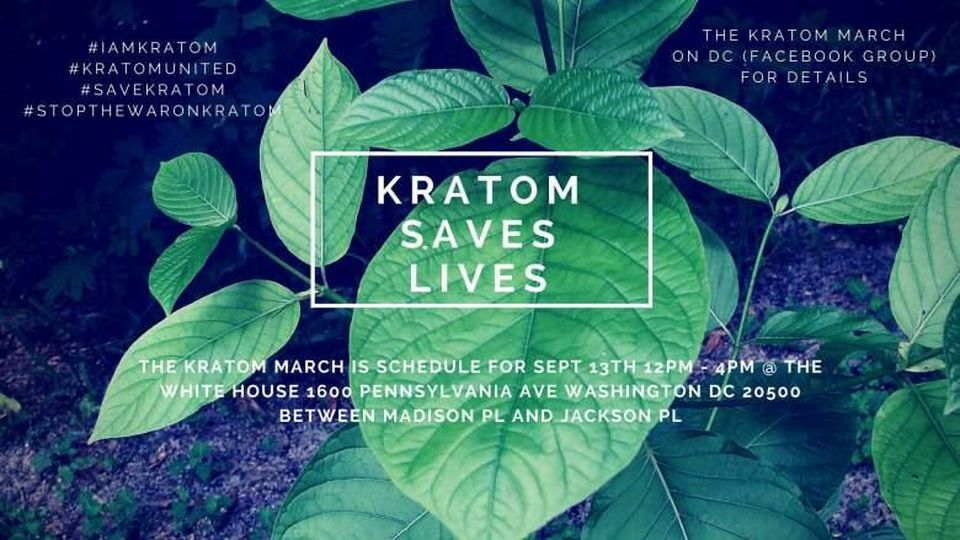Kratom as a pain Manager and complement to CBD 4