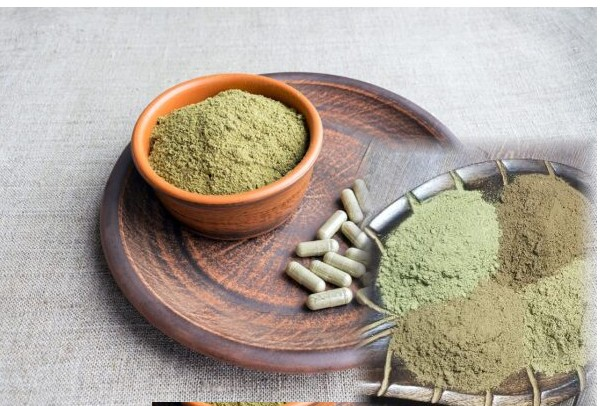 Kratom as a pain Manager and complement to CBD 5