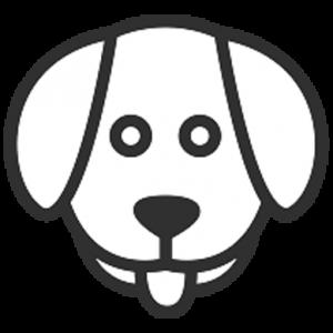 Pet names Generator