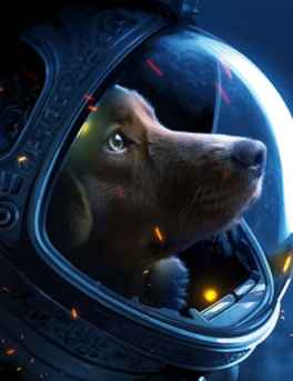 132+ Space Stars Inspired Dog Names For Your Pups 5