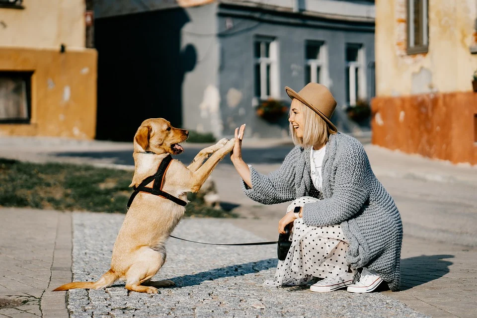 Emotional Support Animals (ESAs)