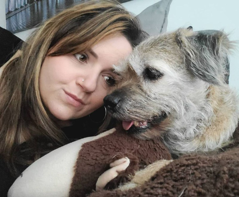 Tips to Improve the behavior of your dog 11