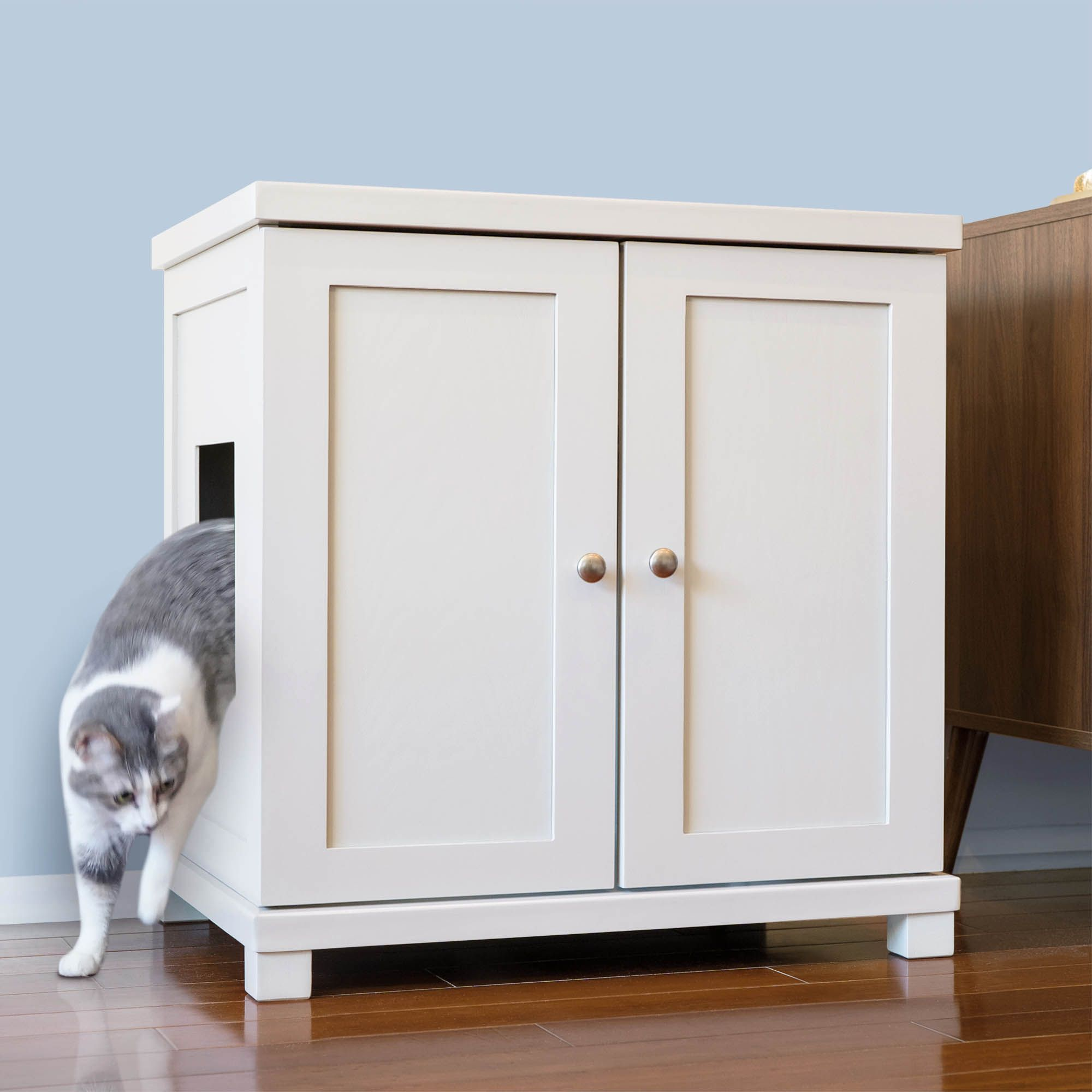 Cat Litter Box And More: Supplies For New Cat Adopters 17