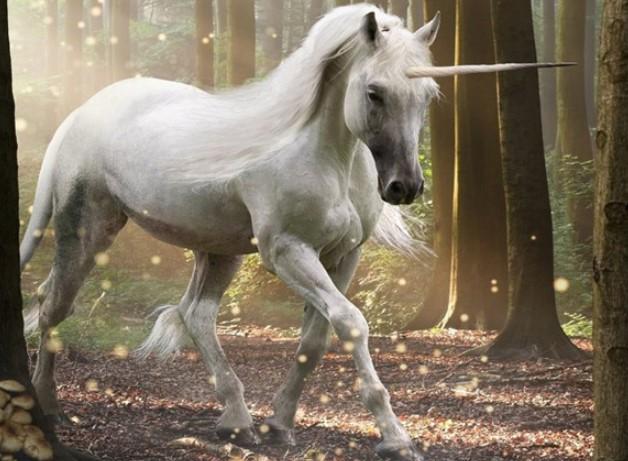 Horses: Mythology and Symbolism 10