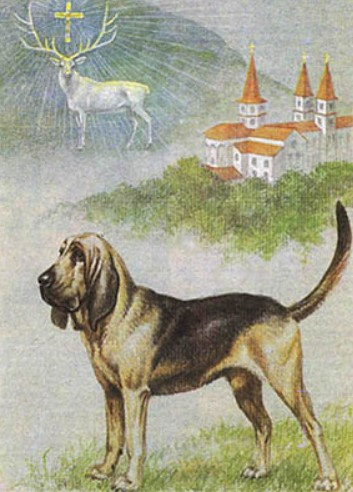 Dogs : Myths Legends of the Middle Ages