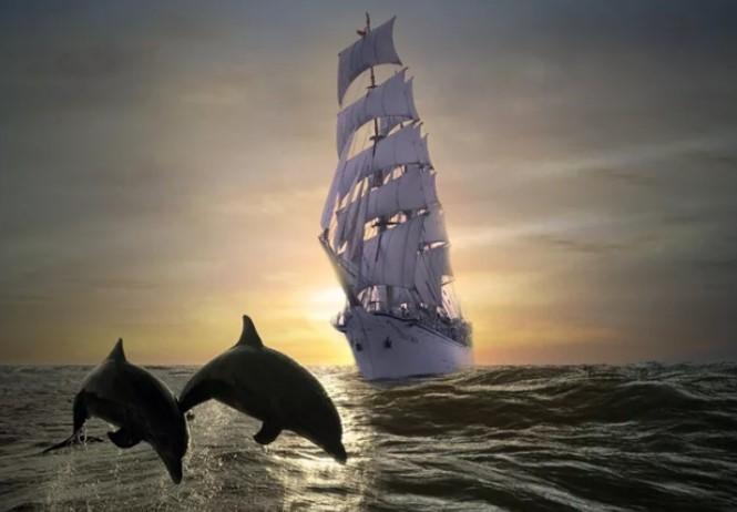 Dolphins in Mythology: Myths and Symbols 7