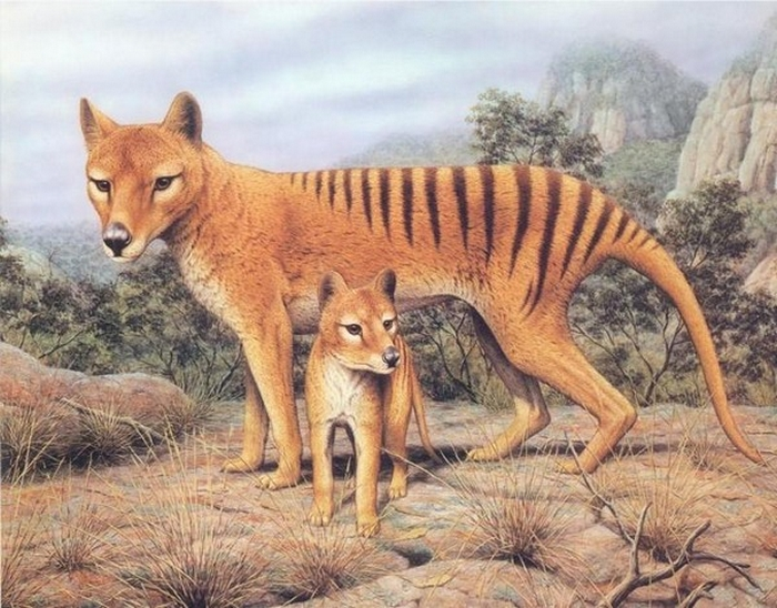 Resurrected Species of Animals and Plants 8
