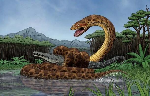 Titanoboa Snake 3