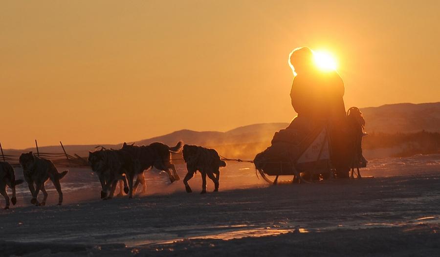 Iditarod - The Last Great Race 51