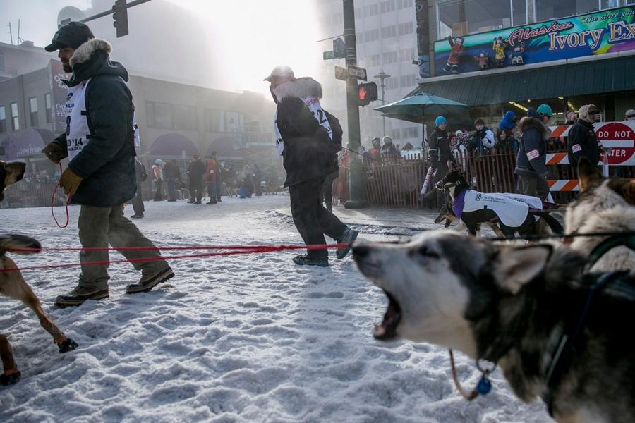 Iditarod - The Last Great Race 38