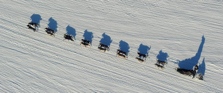 Iditarod - The Last Great Race 42