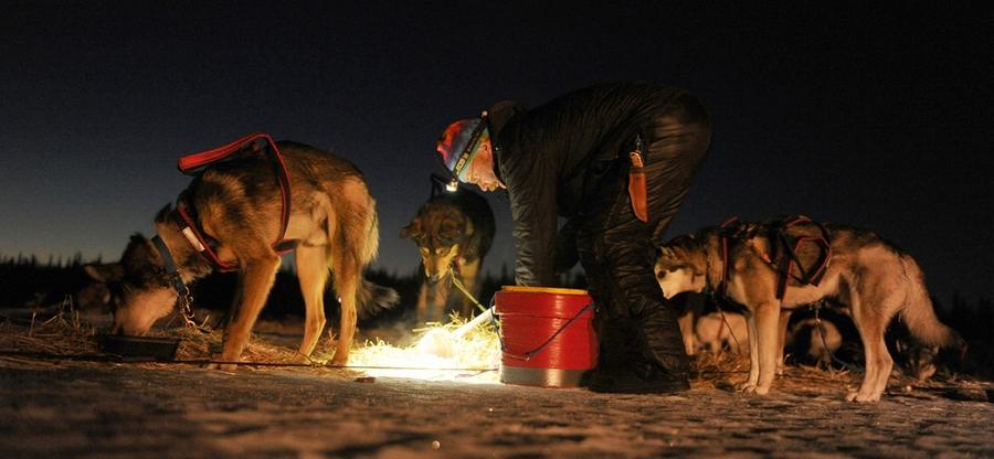 Iditarod - The Last Great Race 44