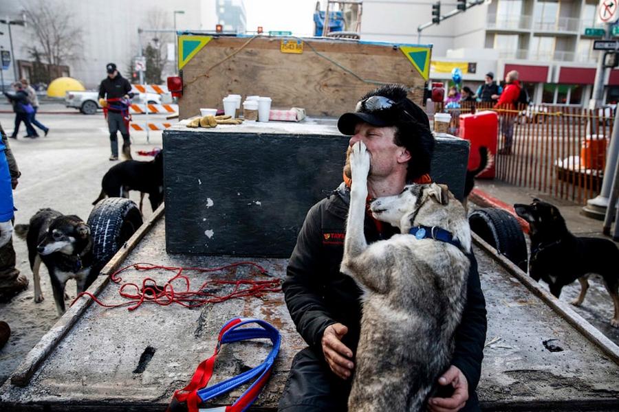 Iditarod - The Last Great Race 36