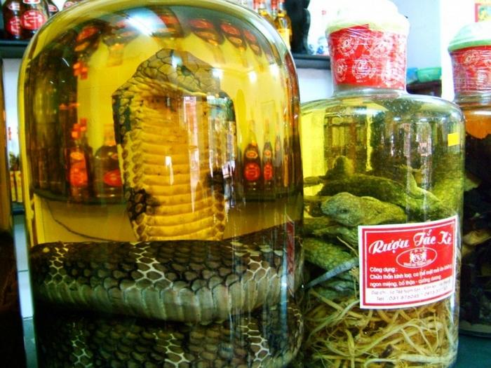 Exotic Drink: Snake Wine 21