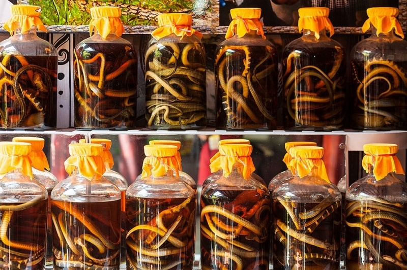 Exotic Drink: Snake Wine 29