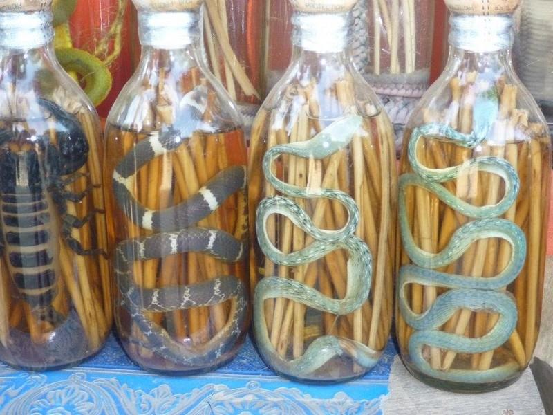 Exotic Drink: Snake Wine 22