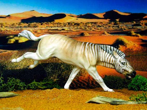 Zebra Quagga: Quagga were Extinct for 100 Years 1