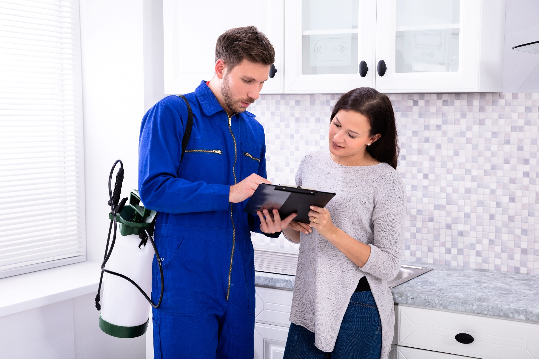 8 Smart Tips To Get Rid Of House Pests 1